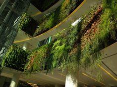 Vertical Gardens in the Urban Landscape - My Modern Metropolis