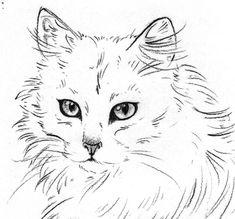 The LaLaVox Doodle Diary: May 2011