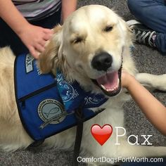 I love a short week! What about you. Working at Arlington Memorial Hospital. . . . #doggygram #sweetdogs #nonprofits #ftworth #dogsarefamily #dogslife #mansbestfriends  #fortworthinsta #fortworth #awww #iamloved #nonprofitorganization #praise #withGod #giveback #dogsmiles #lcck9Comfortdog #veterans #communityservice #ftlocals #dogsoffortworth #workingdog #iluvpax