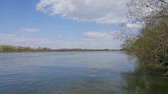 Danube! Beach, Water, Outdoor, Summer, Gripe Water, Outdoors, The Beach, Beaches, Outdoor Games