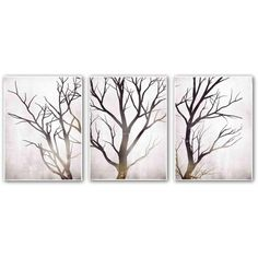 PTM Images 18 in. x 24 in. Winter Tree Print Wall Art (3-Piece) (260 CAD) ❤ liked on Polyvore featuring backgrounds, home, fillers, other and art