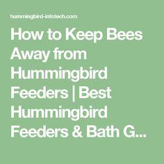 How to Keep Bees Away from Hummingbird Feeders   Best Hummingbird Feeders & Bath Guide