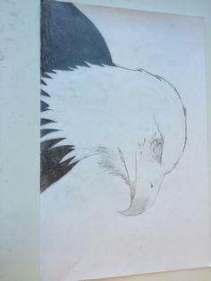 2. In de tweede les op groot vel heb ik de kop van de arend beter afgewerkt en me meer op de details geconcentreerd. Deze les was het moeilijk om de veren te tekenen en het inkleuren van het lijf was wel makkelijk.