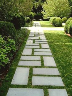 Cheap Landscaping Ideas, Front Yard Landscaping, Walkway Ideas, Mulch Landscaping, Backyard Ideas, Backyard Designs, Patio Ideas, Pool Ideas, Pavers Ideas