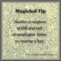 Magical Tip: Dill & Salt