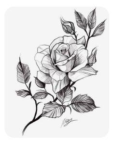 Rose Drawing Tattoo, Flower Art Drawing, Flower Sketches, Floral Drawing, Art Drawings Sketches, Tattoo Sketches, Tattoo Drawings, Floral Tattoo Design, Flower Tattoo Designs
