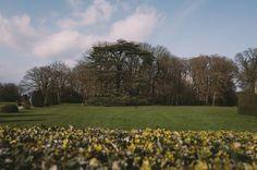Le parc du château #breteuil #nature #garden #madeinwetzlar #landscape #28mm #summilux #leicaq #perspective #chateaudebreteuil #green #wandering #france