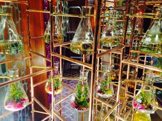 "PENHALIGONS LTD, British Fine Fragrance House, London, UK, ""Potions"", photo by Danielle McCauley, pinned by Ton van der Veer"