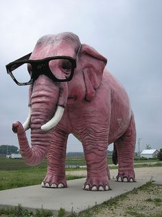 Big pink elephant De Forest, WI