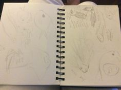 I sketched out the animals and fish at the Audubon Aquarium in NOLA. This is Part 1