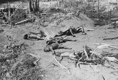 1965, South Vietnam --- South Vietnam: The burned bodies of South Vietnamese children shown sprawled on ground after Viet Cong attack on village