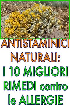 Home Remedies, Natural Remedies, Desperate Housewives, Hemp Oil, Allergies, Health Tips, Detox, The Cure, Medicine