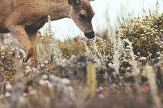 sighting. by ng.kelven