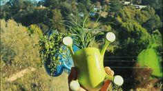 Livi, vaso com sucção para suas plantas;