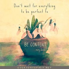 Don't wait for everything to be perfect to be content. #GratitudeQuotes #ThankfulQuotes #GratefulQuotes #Content #GardeningQuote Grateful Quotes, Gratitude Quotes, Positive Quotes, Joy And Sadness, Spirit Quotes, Lets Try, Garden Quotes, Practice Gratitude, Inspirational Thoughts