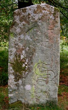 A 'Class II Pictish Symbol Stone', located on Hunter's Hill, south of Glamis, Angus. This side of the stone boasts a 'serpent' symbol and remains of other possible symbols that are no longer visible.