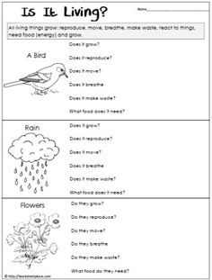 Worksheets Singapore School Classification Of Living Things Worksheet worksheets on pinterest determine if the things are living or not non worksheet
