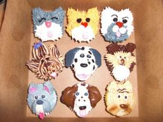 dog/puppy cupcakes
