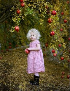 Anyone can count the seeds in an apple, but only God can count the number of hairs on your head ✿⊱╮ by VoyageVisuel Little People, Little Ones, Little Girls, Apple Season, Apple Orchard, Apple Farm, Wild Child, Red Apple, Beautiful Children