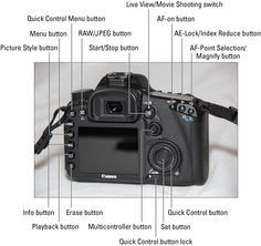 How To Trigger The Shutter Remotely On Your Canon Eos 7d Mark Ii Dummies Canon Eos Eos Shutters