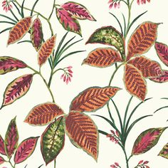 Copper leaves make this tropical wallpaper the perfect compliment for a bathroom with a copper tub! Palm Wallpaper, Tropical Wallpaper, Big Leaves, Autumn Leaves, Copper Tub, Hawaiian Tropic, Forest House, Tropical Leaves, Designer Wallpaper
