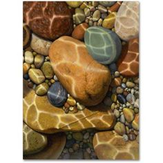 Trademark Fine Art Trip the Light Fantastic Canvas Art by Stephen Stavast, Size: 18 x 24, Multicolor
