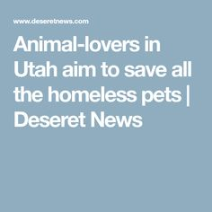 Animal-lovers in Utah aim to save all the homeless pets   Deseret News