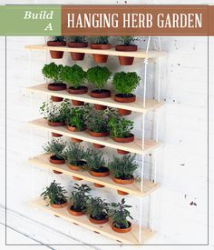 Build a Hanging Herb Garden- I need this for in front of my dinning room window. And kitchen window. And bench seat!