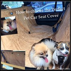 Whirlwind of Surprises: How to Choose a #Pet #Car Seat Cover #travel #tips #ad #howto #dogs #Kurgo #review