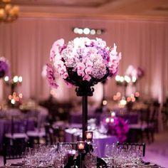 Purple theme