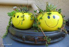 Rastafarian happy face planters | Flickr -