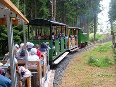 """Lichtenhain/Berbahn: Die Lichtenhainer Waldeisenbahn """"LWE"""""""