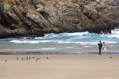 Herolds Bat Beach Front