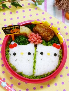 Ghost kitty bento