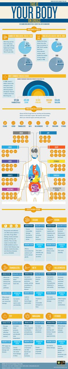Your Body on Drugs Infographic: highlights some of the physiological effects of drug use on the human body.