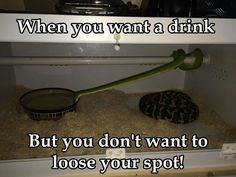 When you want a drink but you don't want to loose your spot.