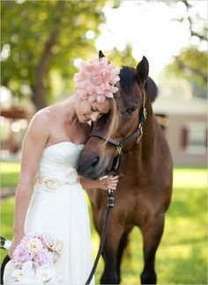 i will get wedding pictures with my horses