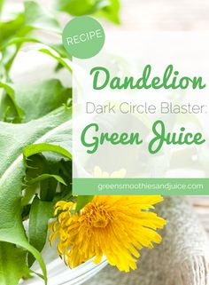 Dandelion greens are powerful! This is a strong juice with positive, visible effects. If you're looking for the best natural solution to dark circles under your eyes, this is it!  #greenjuice #juice #juicing #healthtips #beautytips