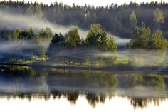 Misty day in Hämeenkyrö, Finland Photo: Kaija Valkama Landscape Pictures, Nature Pictures, Misty Dawn, Finland Travel, Forest Painting, Water Reflections, Landscaping Company, Scenic Photography, Beautiful World