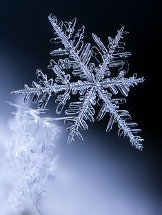 Macro photo of a snowflake by Ondrej Pakan.