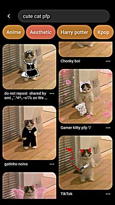 Video Editing, Photo Editing, Funny Profile Pictures, Mix Photo, Aesthetic Template, Anime Best Friends, Magic Words, Wallpaper Iphone Cute, Cute Cartoon Wallpapers