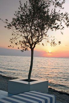 #Greece #Thessaloniki #view #sunset Greece Thessaloniki, Team Building Activities, Greek Islands, Cyprus, Events, Sunset, Outdoor, Greek Isles, Outdoors