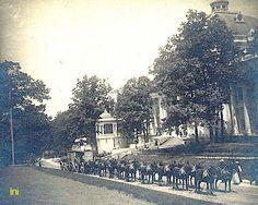 Borax Twenty Mule Team at the 1904 World's Fair, St. Louis