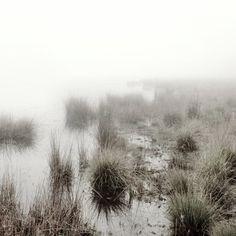 Mist art - Mist photography | Etsymode | Scoop.it