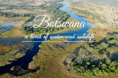 Botswana: A Land of Water and Wildlife Round The World Trip, Our World, World Traveler, Us Travel, Safari, Cool Photos, Places To Visit, Wildlife, Mountains