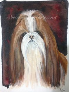This is a painting I did for a patient, they have quite a number of shiatsu's all are impeccably turned out, groomed to perfection. I was sent some wonderful photos of them all ( he is a photograph...