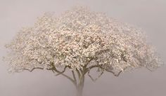 "Magnolia, 2013, D-print on rag paper, 100 x 170 cm (39.4"" x 66.9"")"