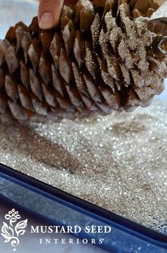This project is simple, but I was so happy with how beautiful and elegant these glittered pine cones turned out that I thought I would share a tutorial on how I made them. I bought these over-sized pine cones from Hobby Lobby, but you can use freebies collected from your yard or an obliging neighbor. Insert a small screw eye into the woody end of the pine cone. I just twisted it in with my fingers, but you can use a drill or a small nail to create a pilot hole, if necessary. I then applied…