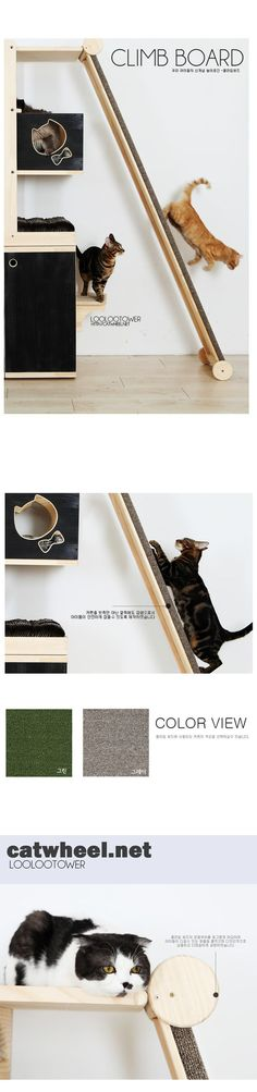 I like the idea of making a ramp to encourage the use of their back claws. We may have to make it a little lower for our cats, but it still seems like a great way to encourage exercise. -- Cat climb board! #cats #CatClimbBoard #catsdiytree