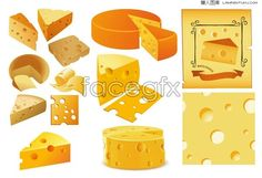 Various shapes of cheese vector